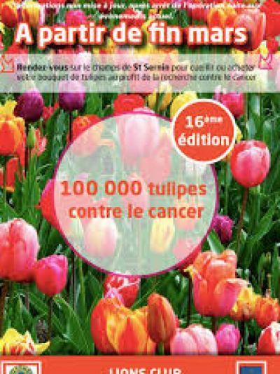Tulipes et cancer